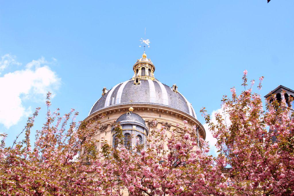 Cherry blossom Paris- Square Gabriel Pierne| The Glittering Unknown