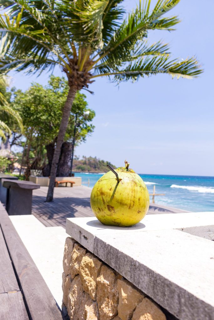 Coconut at Qunci Villas- Why You Need to Visit Lombok, Indonesia NOW