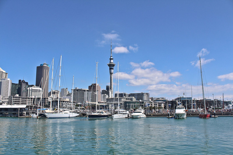 Beautiful Auckland City and the Skytower