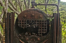 Old steel boiler at Whangamumu Whaling Station