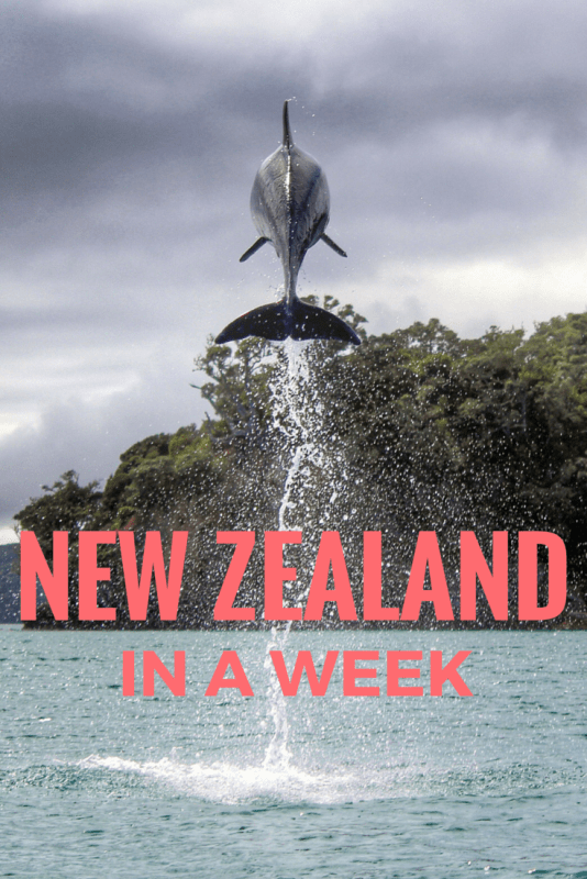 new zealand in a week
