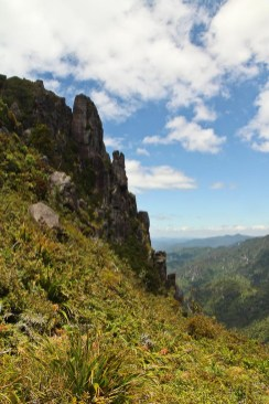 Pinnacles Track Coromandel