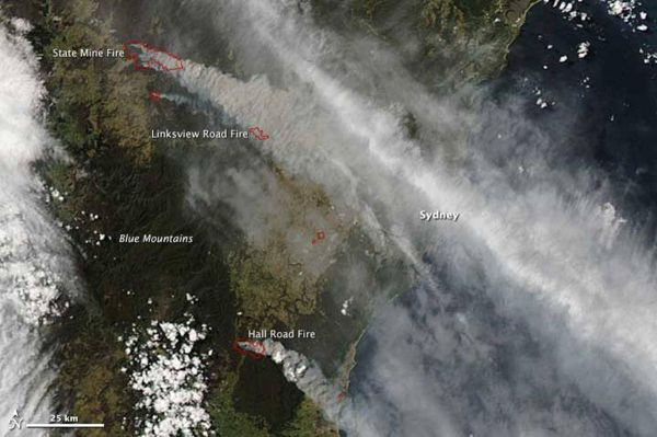 Australia ablaze as wildfires march on Sydney suburbs ...
