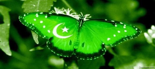 Pakistan's flags wallpapers for facebook covers for 14 august (1)