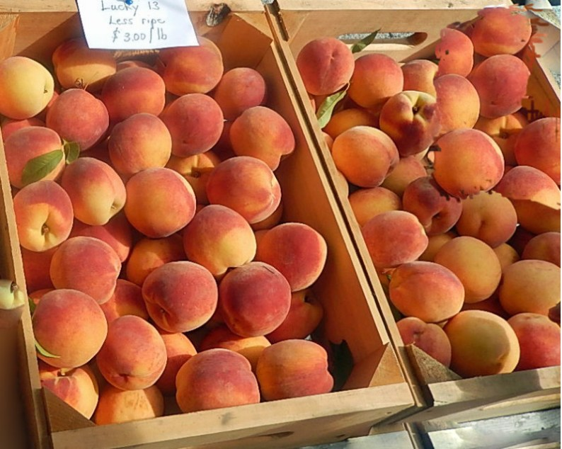Peaches will be in markets soon