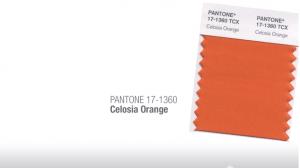 Celosia orange Tendencias de color Primavera Verano 2014 Hombre TheGoldenStyle