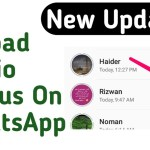 How To Upload Audio Status On WhatsApp – THE GONDAL