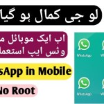 Dual Space – Double Whatsapp in One Phone – App Cloner