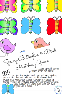 Spring Butterflies and Birds Matching Game