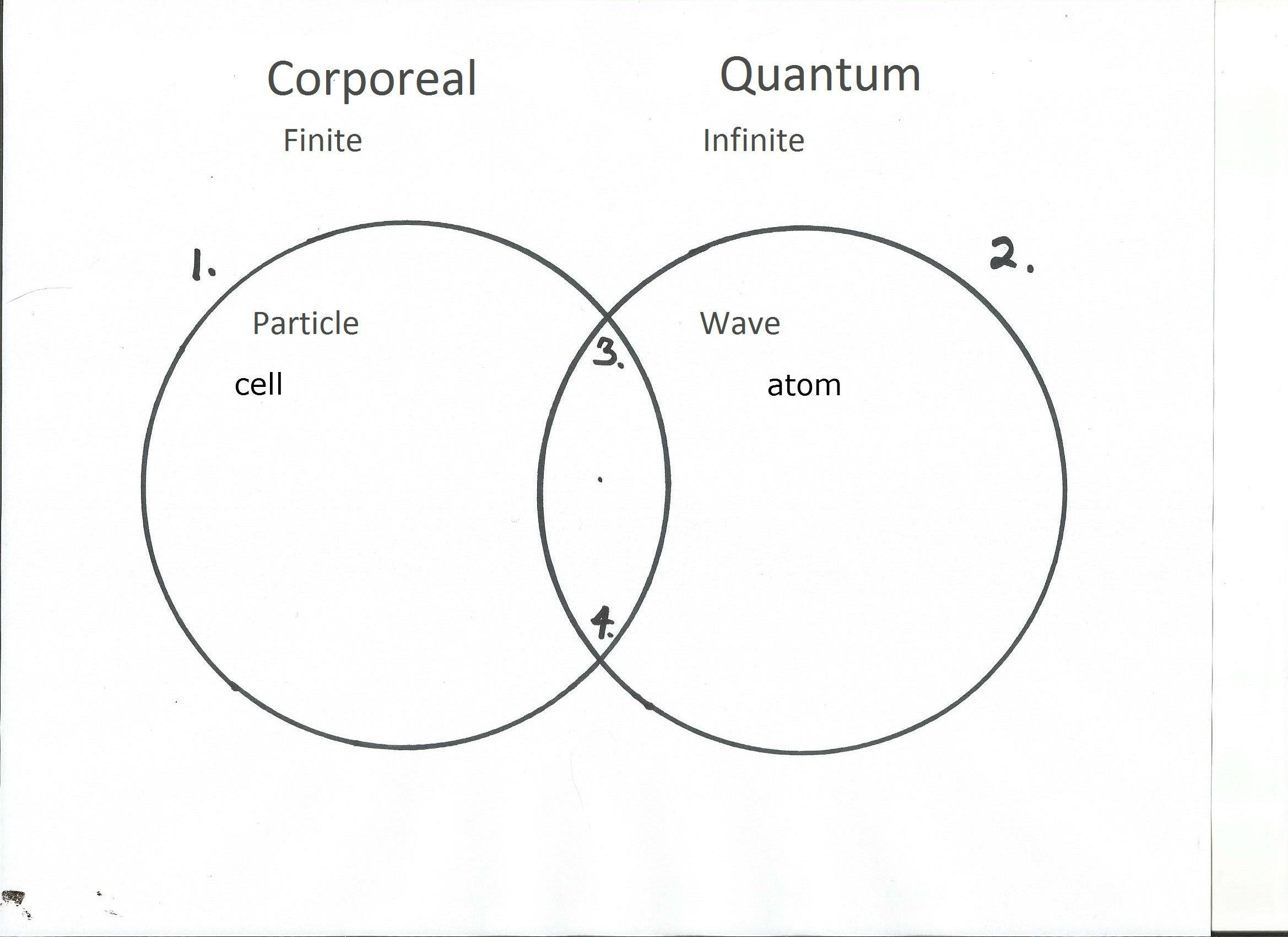 Essay 1 Leibniz Principle Of Pre Established Harmony