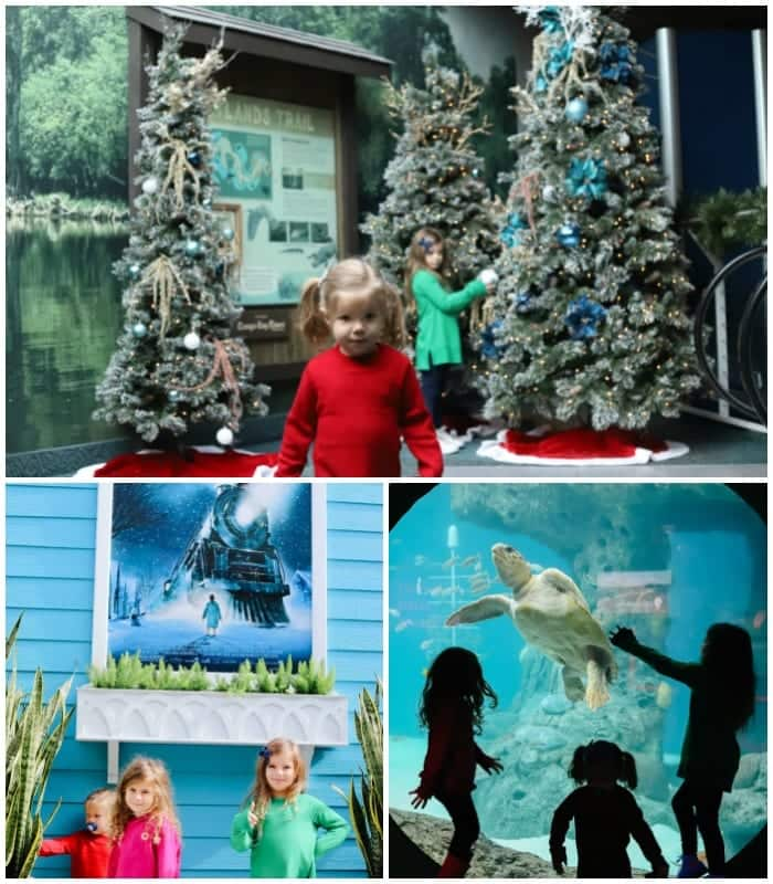 Christmas events in Tampa Florida / Family friendly Christmas events in Tampa Bay / The best Christmas events in Tampa / Christmas at the Florida aquarium