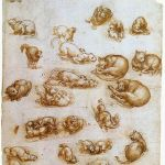 Study Sheet with Cats Leornardo Da Vinci