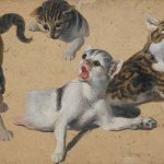 Kittens at Play Alexandre Francoise Desportes Private Collection kittens in art