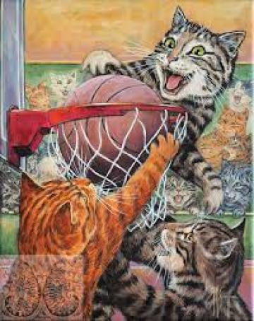 Basketball, Martine Coppens