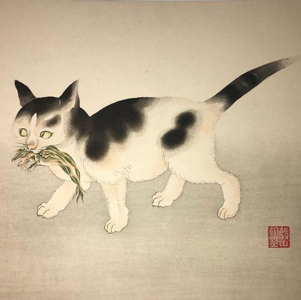 Chat tenant une grenouille estampe attribuée à Aoyama Seizan