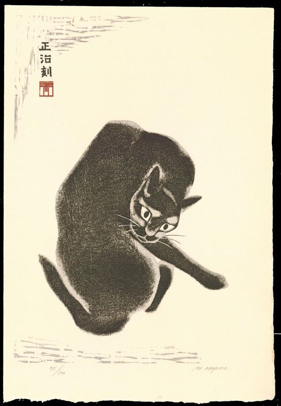 Masaharu Aoyama, Cat