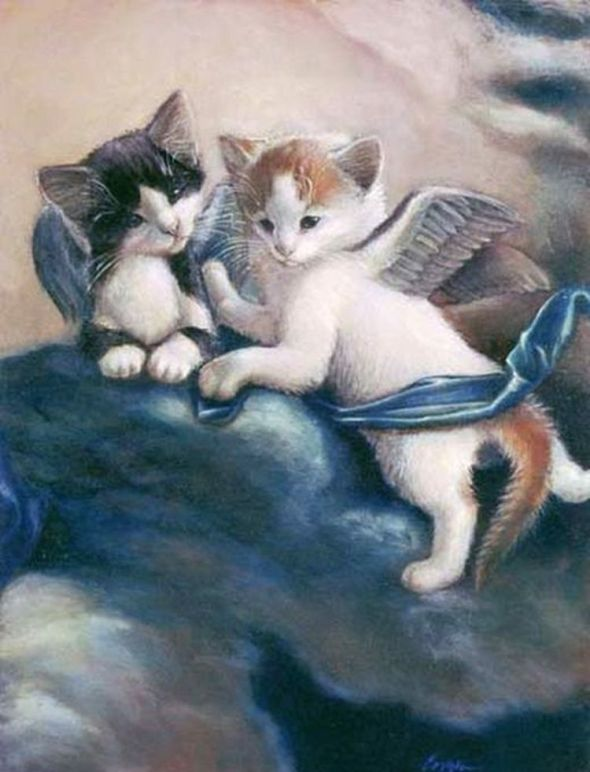Melinda Copper, 10 Kittens in the Clouds