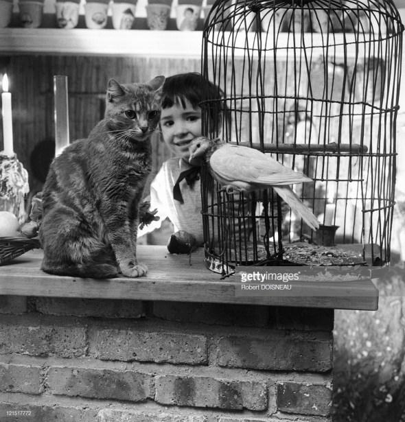 Robert Doisneau, Child, Cat and Dove 2