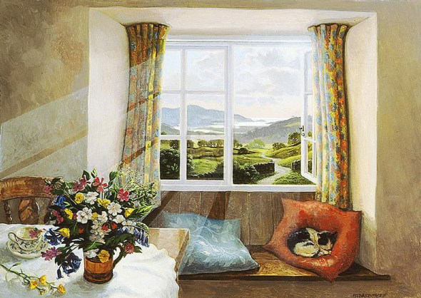 Cat Napping by the Window, Stephen Darbishire