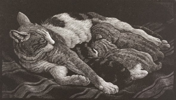 Charles Frederick Tunnicliffe, Mother Cat and Kittens