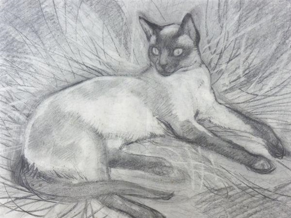 Siamese Cat Pencil Sketch, Charles Tunnicliffe