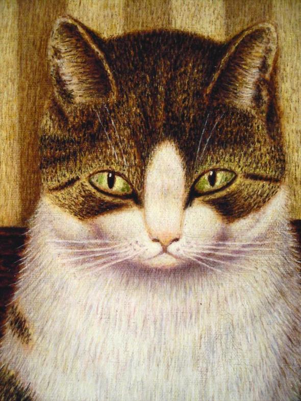 Tabby Cat, Sal Meijer