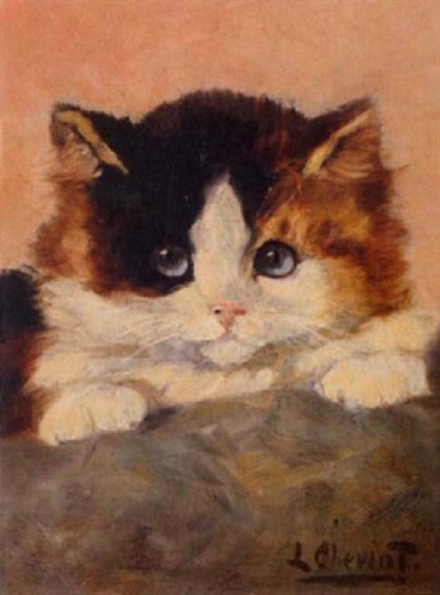 Llilan Cheviot, Kitten