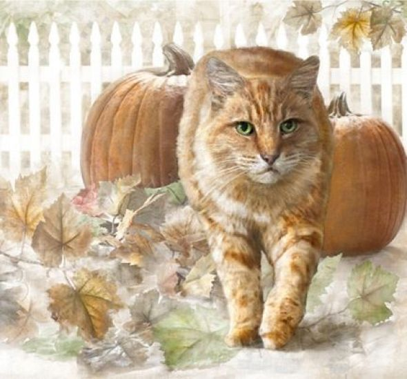 Dianne Woods,Ginger Cat with Pumpkins