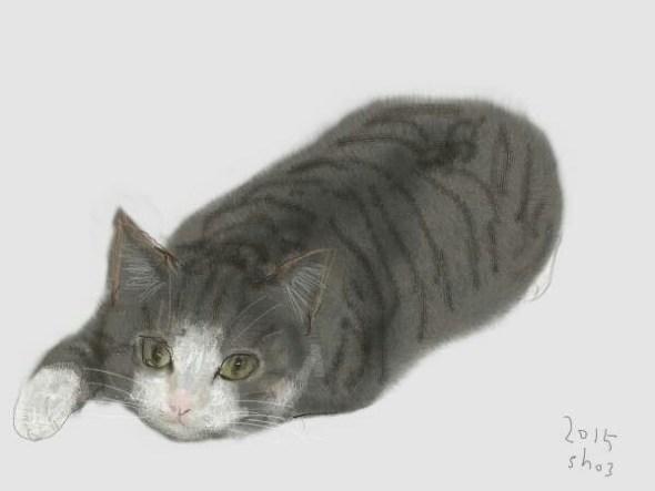Shozo Ozaki, Cat Lying Down