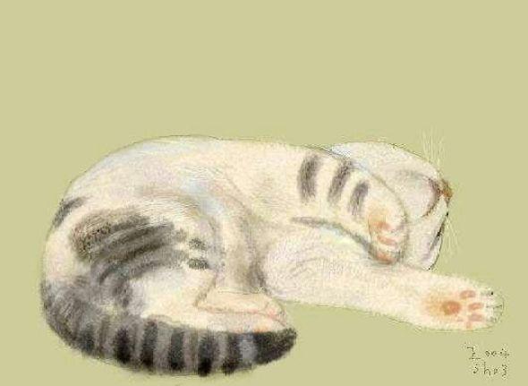 Shozo Ozaki, Sleeping Cat
