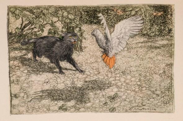 Tomasso the cat confronts Loretta the parrot, Arthur Rackham