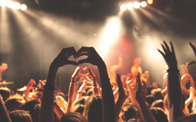 How to find your ideal clients and build a tribe of raving fans