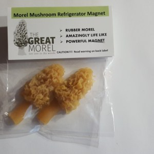fridge_magnet