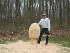 tree_stump