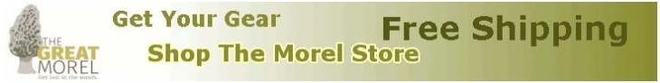 Shop The Morel Store