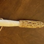 Dogwood Hand Carved Morel Hiking Stick