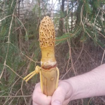 Morel carved hiking stick