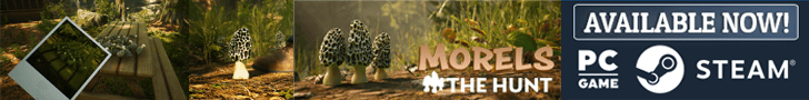 Get Yours Now - Morels The Hunt