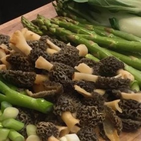 More morel recipes