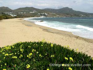 Μύκονος, παραλίες