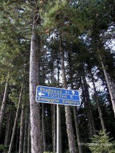 Δάση Πάρνωνα, πινακίδες