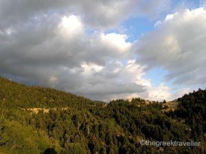 Δάση Πάρνωνα