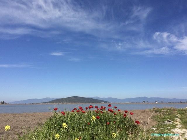spring in Greece