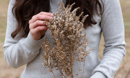 Guide To Natural Fibers: Earth-Friendly Fabrics For Fashion