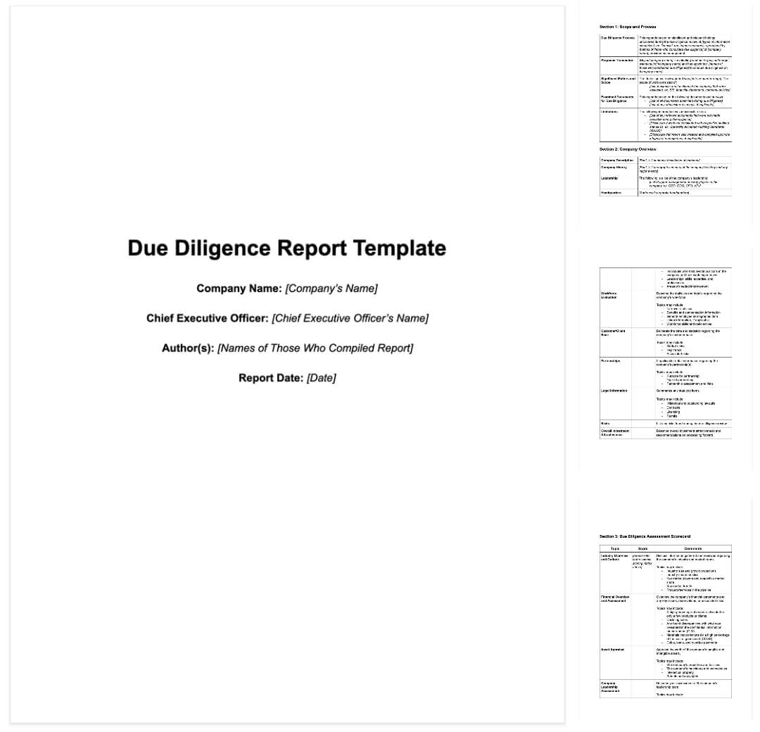 Vendor Due Diligence Report Template