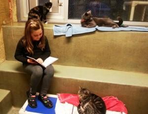 criancas-alfabetizacao-ler-animais-abandonados-1