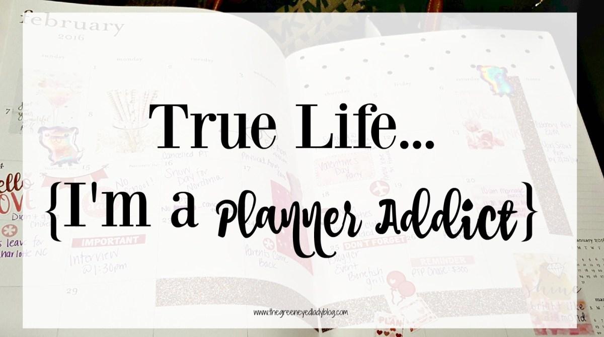 True Life {I'm a Planner Addict}