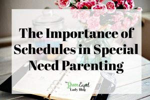 The Importance of Schedules in Special Need Parenting