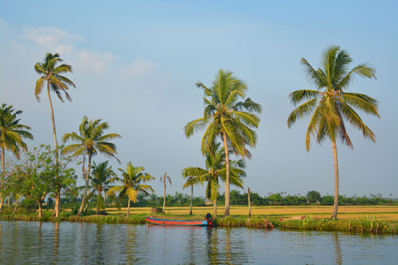 13_Kerala-Blog-Express_Backwaters-Alappuzha_Houseboats-Lakes-and-Lagoons