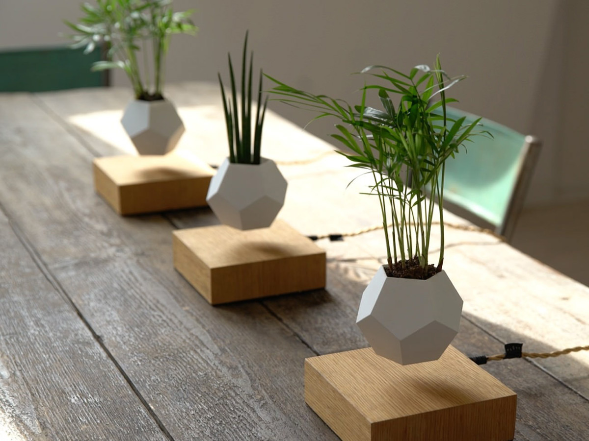 Lyfe Floating Plant Pot